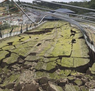 地震後のハウス_R.jpg