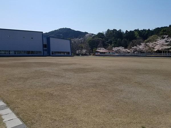 shimada01.jpg