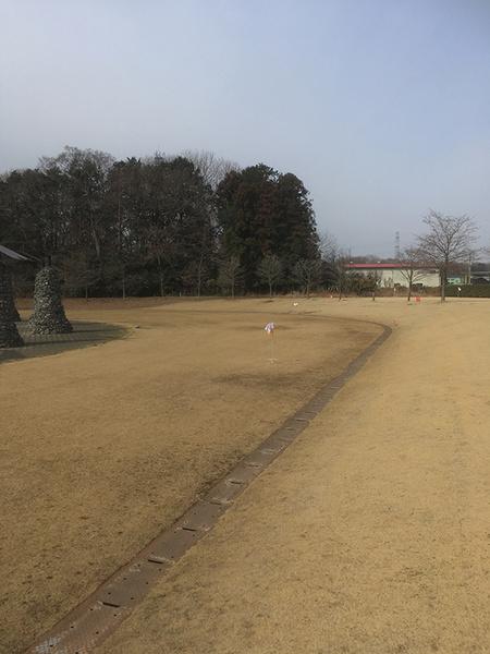 yachiyo09.jpg