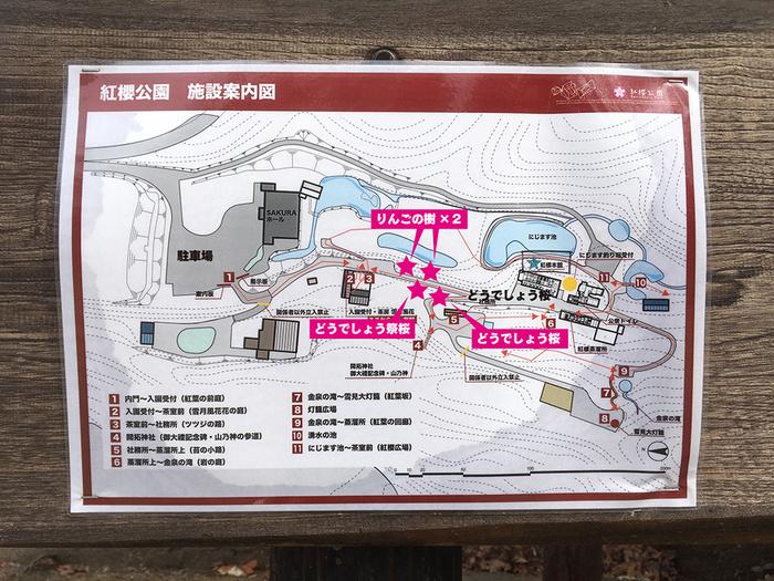 benizakura001.jpg