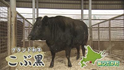 新ひだか町のブランド黒毛和牛「こぶ黒」