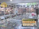 日本玩具資料館