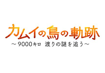 テレメンタリー2017 カムイの鳥の軌跡 ~9000キロ 渡りの謎を追う~